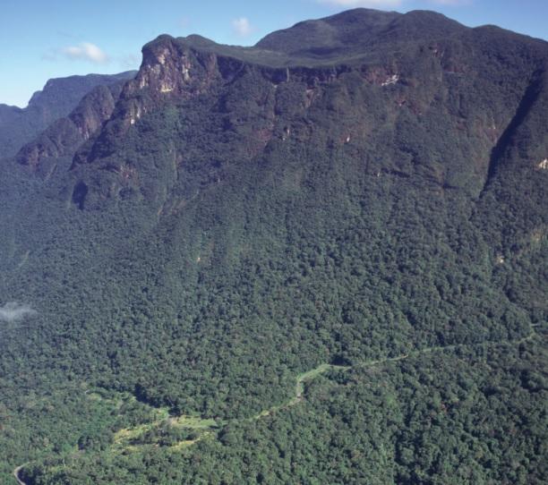 Serra da Graciosa, onde há uma estrada de ferro ligando Curitiba a Morretes.